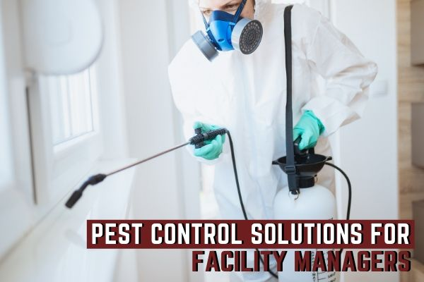 Pest Control Solutions for Facility Managers
