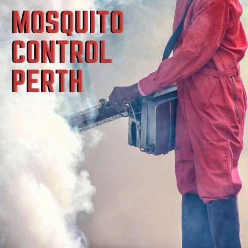 mosquito control perth