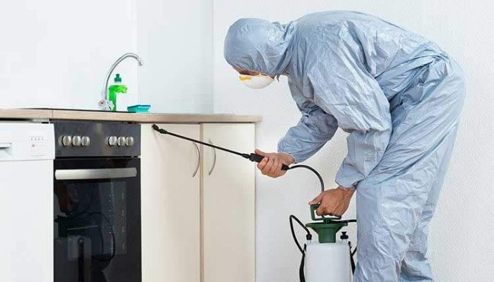 residential pest control perth (1)