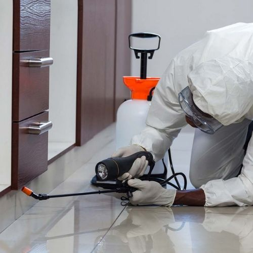 residential pest control perth